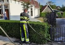 Coniferen vatten vlam door onkruidbrander