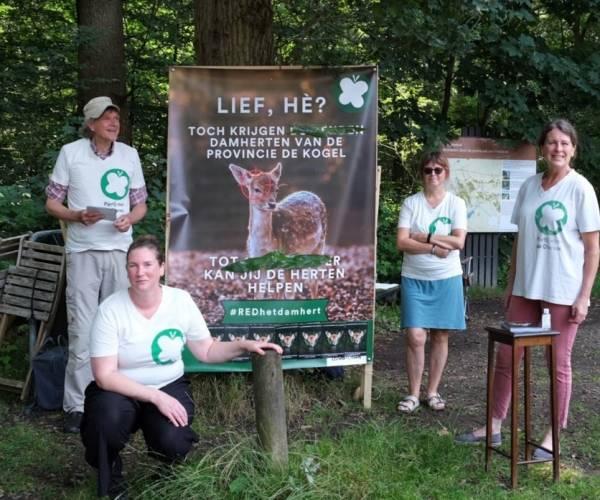 Partij voor de Dieren in actie tegen afschieten damherten Oranjewoud