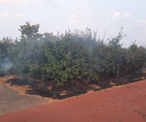 Brandweer blust bermbrand aan de Huismanstraat